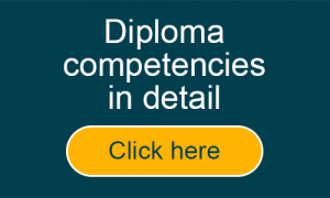 Diploma competencies in details