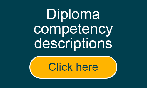 Key Account Manager Diploma competencies in detail
